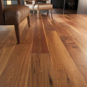 american-black-walnut
