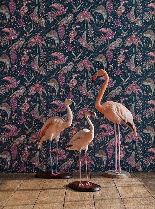 Animalia Audubon Pink wallpaper